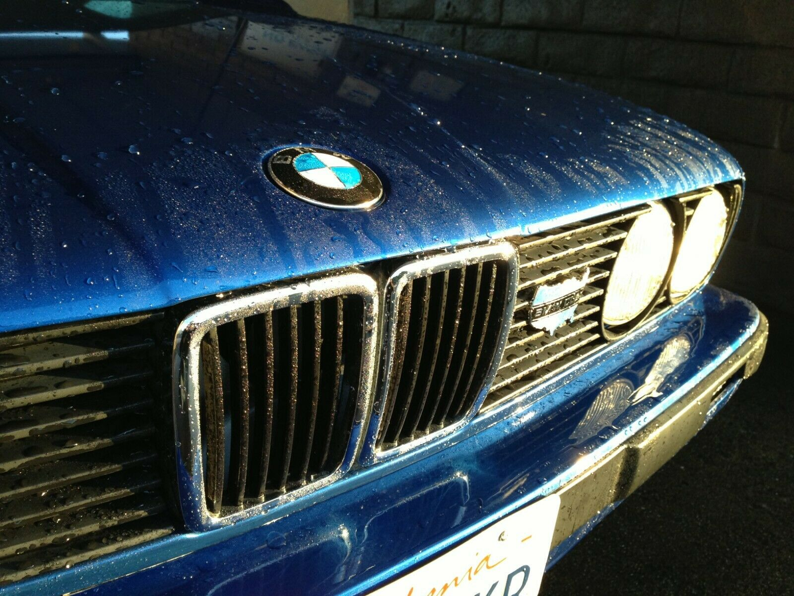 BMW e21//e23//e24//e28//e30 Headlamp Decal